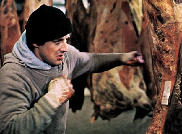 2009650-rocky_by_connect_indotcom