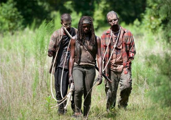the-walking-dead-after-michonne