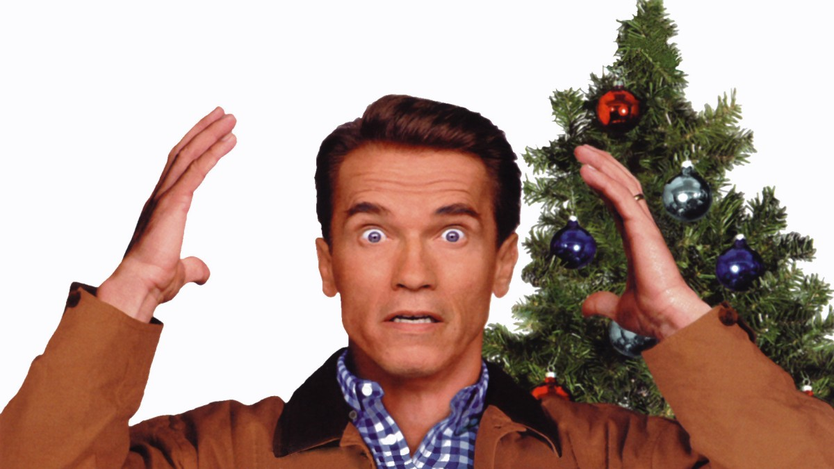 jingle all the way as told by the crimes committed the main damie - Arnold Christmas Movie