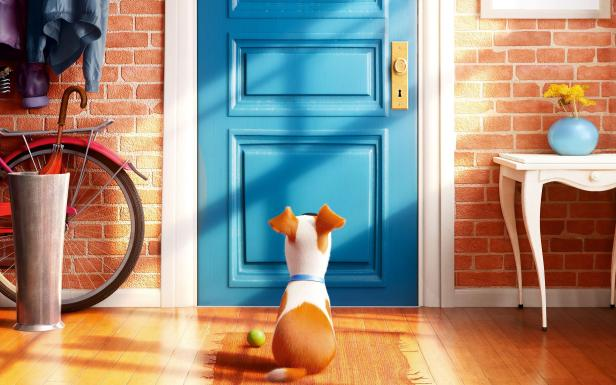 secret life of pets hi res still